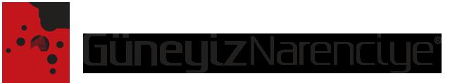 guneyiz-mobil-ust-logo